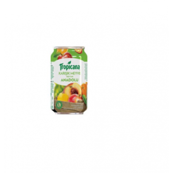 TROPICANA MEYVESUYU 330ML